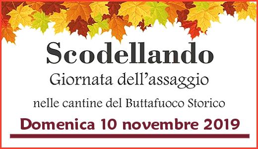 Scodellando 2019 (10/11/2019)