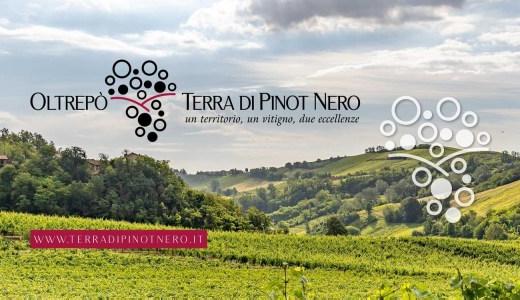 Oltrepò terra di Pinot Nero