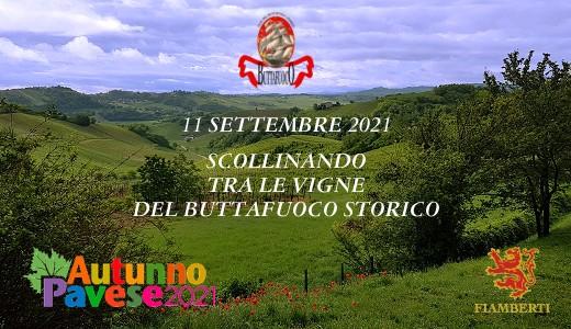 Scollinando Autunno Pavese (11/09/2021)